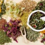 הטבע במלוא עוצמתו- זה הזמן לשלב רפואה טבעית